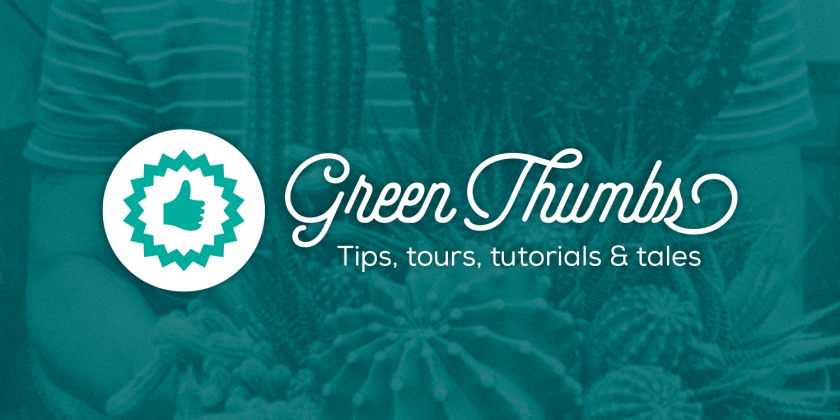 Introducing Green Thumbs